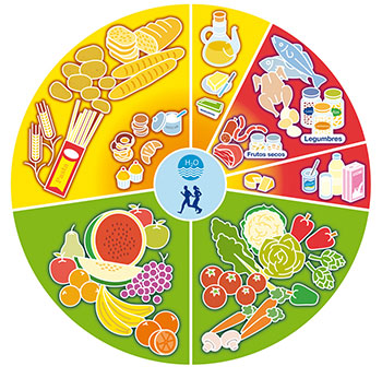 La nueva rueda de los alimentos