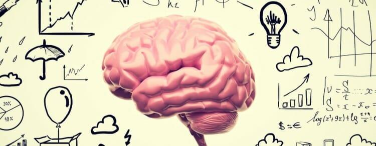 en caso afirmativo si no hay diagrama del cerebro