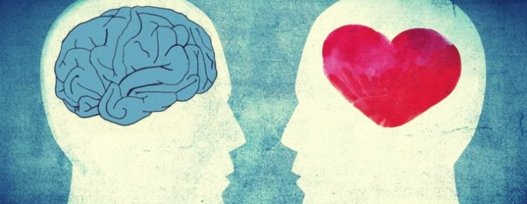 Diferencias físicas entre el cerebro emocional y el cerebro racional