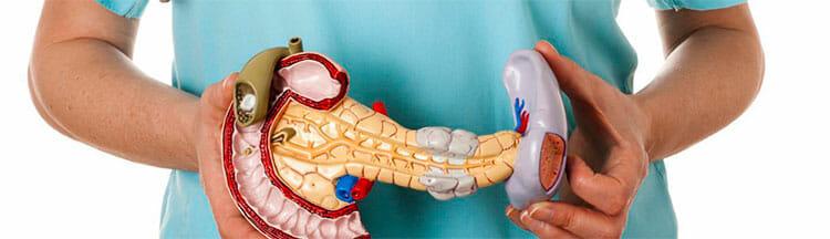 Problemas de las funciones del páncreas
