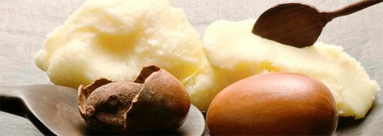 Manteca de Karité: múltiples propiedades para la piel y el cabello