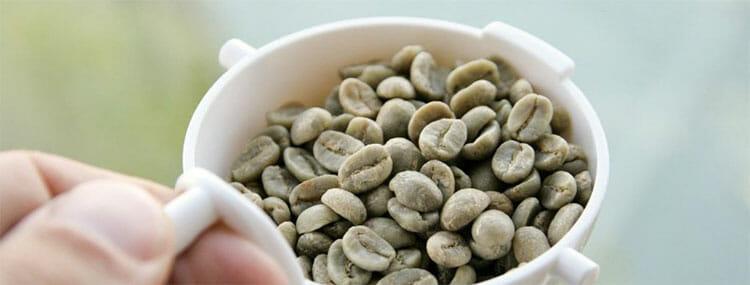 Café verde: qué es, propiedades y beneficios