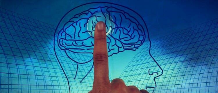 Cuál es la función del neuropsicólogo