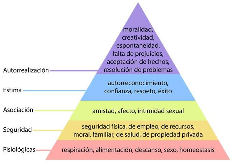 Pirámide de Maslow: las necesidades humanas