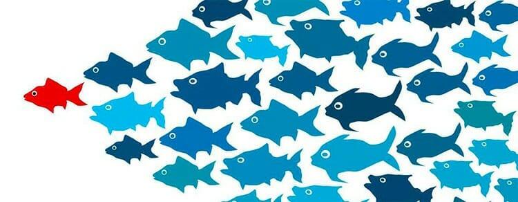 Tipos de liderazgo en empresas