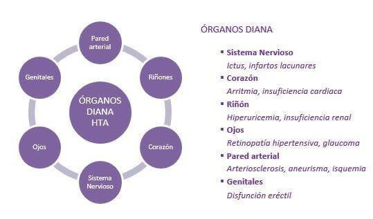 Órganos diana de enfermedades