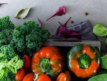 Recetas de verdura