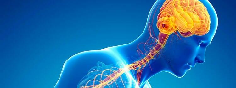 Enfermedades relacionadas con el sistema nervioso periférico