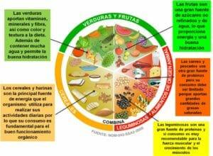 información sobre el plato del buen comer