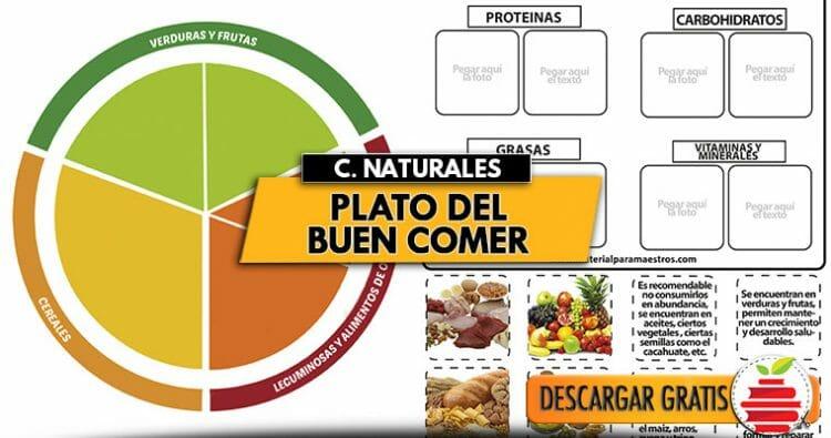 Plato Del Buen Comer La Súper Guía De La Alimentación Sana