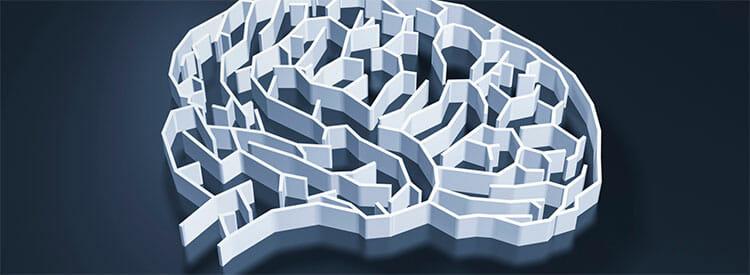 Principios de la psicología humanista