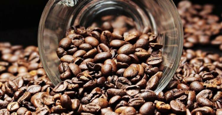 Beneficios del café para el organismo