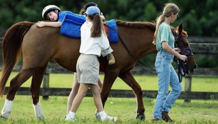 ¿A quiénes está dirigida la terapia con caballos?