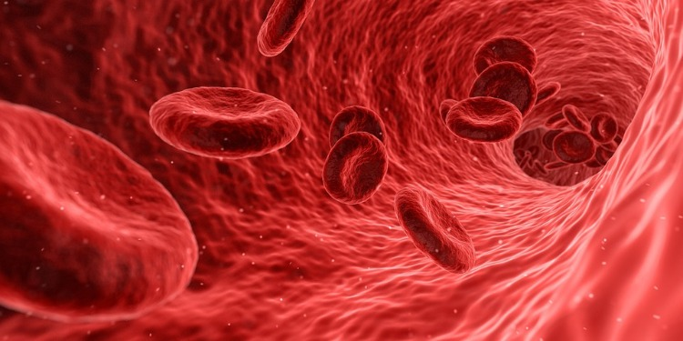 Tipos de sangre