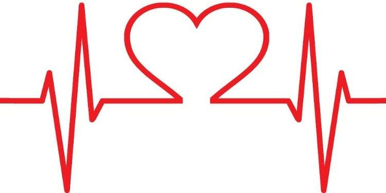 Papaya salud cardiovascular
