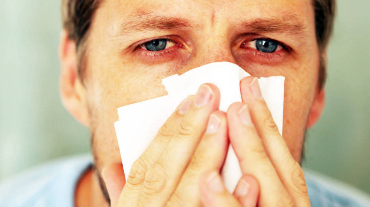 remedios+caseros+para+alergia+en+el+cuerpo