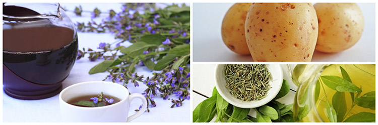 Remedios caseros que te ayudarán a controlar el sudor