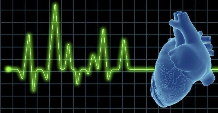 ¿Cómo se realiza el ecocardiograma?