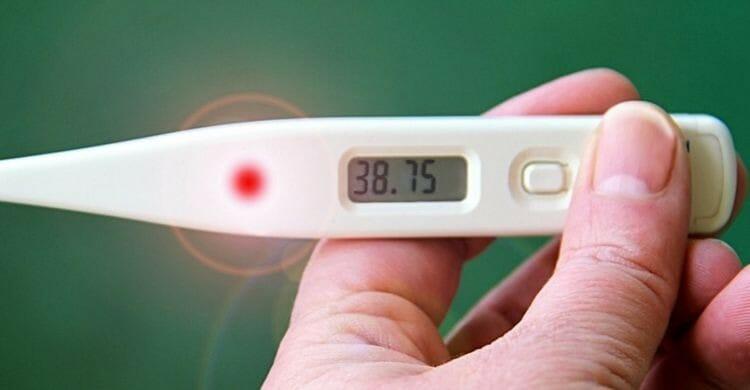 ¿Cuáles son las enfermedades más comunes en otoño?
