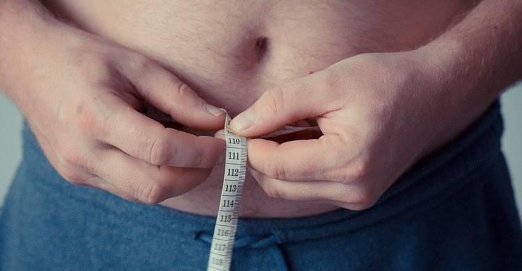 La obesidad está estrechamente vinculada con los alimentos procesados