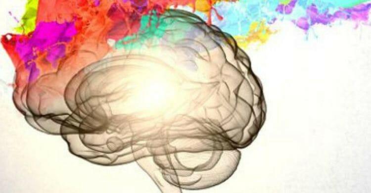 tips para cuidar la salud del cerebro