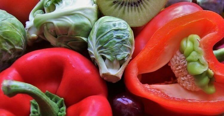 ¿Para quiénes está indicada la dieta paleolítica?