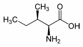Composición química de la isoleucina