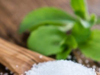 Stevia, la mejor planta para la diabetes