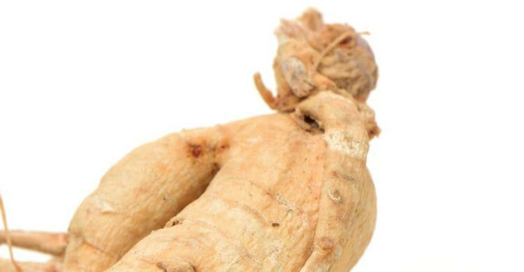 Ginseng: beneficios y para qué sirve