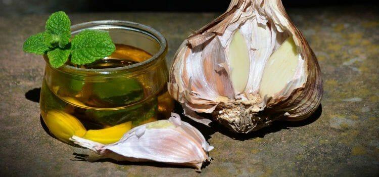 Aceite y ajo, remedio casero para Ascaris lumbricoides