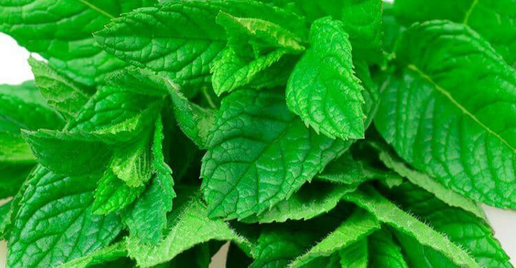 Los mejores remedios caseros para la tos seca