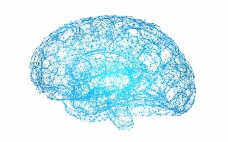 Neuropsicología: una ciencia enfocada en el cerebro